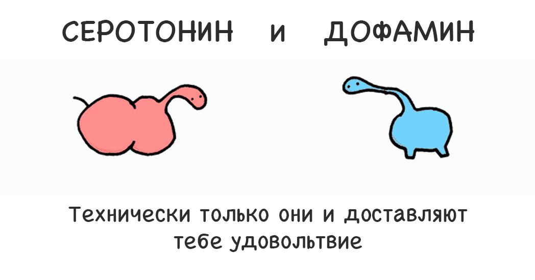 serotonin-chto-eto-za-gormon